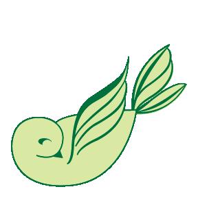 rise-n-shine-cleaning-atlanta-bird-07